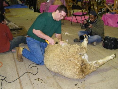 Lovely Lambs etc.'s Jason Seibert.